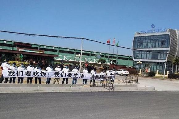 网传南京银隆新能源商务车项目不动产遭查封